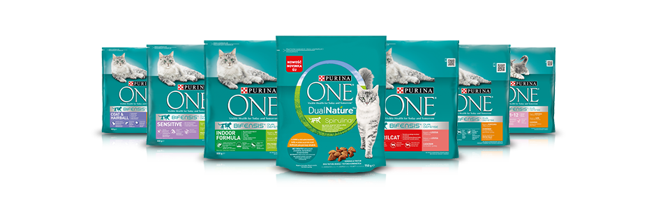 Purina One Kot